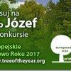 EUROPEJSKIE DRZEWO ROKU 2017
